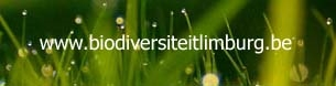 website biodiversiteit in limburg